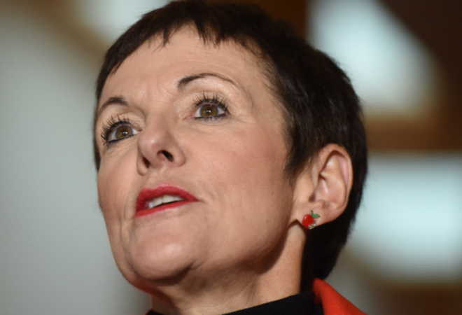 Kate Carnell is first small business ombudsman