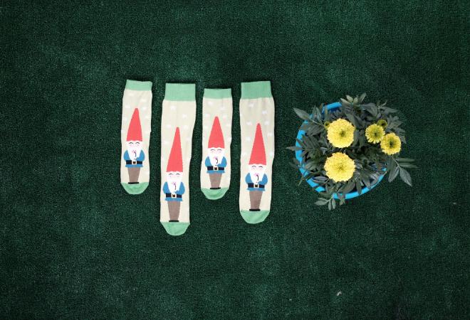 Sock Gnomes