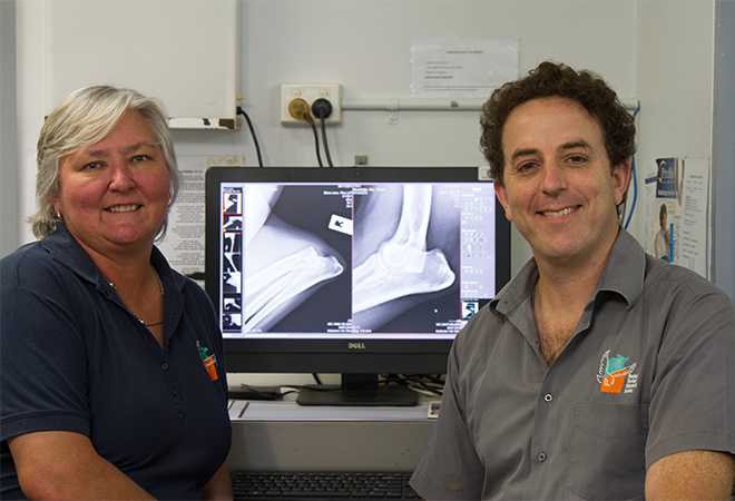 Animal practice: NT Vets brings healthcare to the Top End