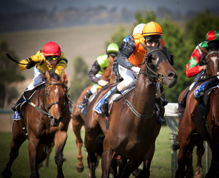 Four things small biz can learn from last year's Melbourne Cup