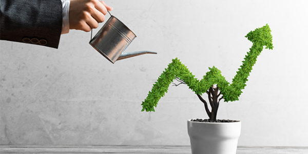 3 tips to grow your business in the new normal