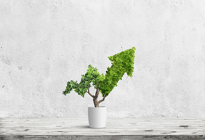 What small businesses need to know about scaling and growth